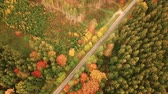 eset : Aerial view of road running through autumn landscape with traveling vehicles