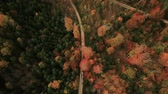 Descending tracking shot of gravel road during colorful fall season Stock Footage