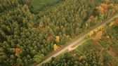Aerial pan shot of empty country road in autumn forest landscape