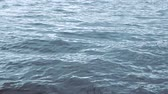 eau claire : Still shot of water surface with ripples moving (HD) Vidéos Libres De Droits