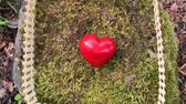 kerítés : Red heart laying on fence on moss in a forest (Full HD)