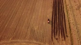 bavyera : Aerial tracking shot of a red tractor driving in a field during Germany during summer (HD)
