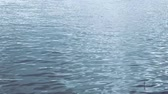 kék háttér : Still shot of ripples running over water surface of lake or river near shore (HD)