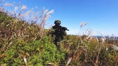 soldado : Soldier patrolling. Military forces. Fields and sea on background Vídeos