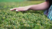 весна : woman holds her hand through the lawn bushes. park in the open air.