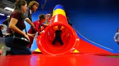 kidzania : Children ride from the hill on a childrens playground with parental insurance