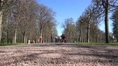 four children : Russia, May 09, 2018, Peterhof, couples and children walk in the park zone in warm clothes Stock Footage