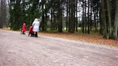 behind the wheel : Russia, Pavlovsk, October 28, 2017 Mother with a child in a wheelchair taking a walk with her daughter Stock Footage