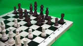 satranç : a black horse and a white pawn in a chess match.