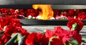 guerre mondiale : red carnations lined around the eternal flame.