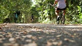 ormanda yaşayan : Asian people exercising by riding bicycles on the track in the lush green forest with fresh air and pollution free. Concept sport healthy lifestyle. Selective focus on the ground. Stok Video