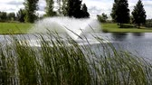 splash park : Summer wind blowing the spray of a fountain from the park pond Stock Footage