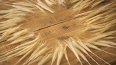 bochník : Golden ears of rye on old wooden table in circle