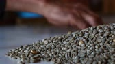 food and drink : Selecting coffee beans