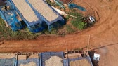 salvador : Aerial view of drying coffee bean in the plant