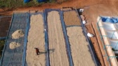 coffee farmers : Aerial view of drying coffee bean in the plant