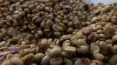 coffee growing : Ferment coffee slow motion