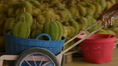 cheiro : Durian in fruit market Stock Footage