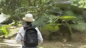 görme : Rear view of asian girl with backpack walking in tropical natural park in thailand.