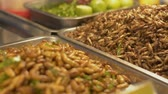 comestível : Close up cooked insects and worms in metal tray at local food market. Iconic street food in thailand. Vídeos