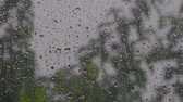 trough : Medium shot of a storm trough to room window Stock Footage