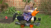 Full shot of an adult woman watering plants in her garden Wideo
