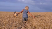 On a sunny day, a woman is walking along a wheat field with a white dress, in a straw hat on a nature background Concept life style ecology environment happy people freedom, wonderfully beautiful view Stok Video
