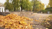 ancinho : Female janitor in uniform sweeping fallen leaves in park, low-paid job, crisis
