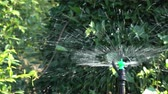 수분 : automatic sprinkler splashing water in green garden
