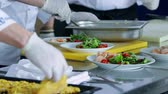 gastronome : People working in the kitchen Stock Footage