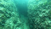 jaskinia : Underwater cavern entrence deep in the sea