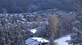 vadi : Incredible aerial drone view on small luxury resort village cozy villas in pine tree winter forest in Alps mountains