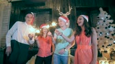 sparkler : Group of friends celebrating Christmas, New Year.
