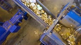 utilization : Recycling plant. Wide angle shot of a conveyor sorting garbage. Stock Footage