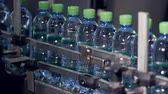 engarrafado : Industrial conveyor transporting plastic bottles with water. Vídeos