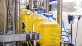 produtos químicos : Caps being put on filled plastic bottles. Stock Footage