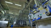 distribution : A distant view at all piping equipment inside a dairy factory workroom. 4K.