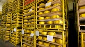 чеддер : Different types of cheese being stored at cheese plant.