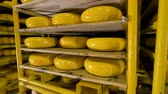 parmesão : Warehouse of cheese at milk products factory.
