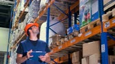 отправка : A warehouse employee inspects warehouse storage place.
