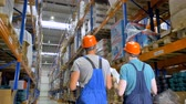 explicando : Two inspectors talk during work at a warehouse in a back view. Stock Footage