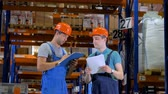 палетка : Warehouse Workers in Hard Hat working in a warehouse between Storage Racks. 4K.