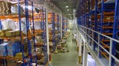 distribuidor : Camera goes between warehouse shelves in a modern storehouse with many racks, shelves. Aerial.