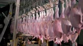 butchered : Chicken carcasses after treatment on head cutting machine at food factory. 4K. Stock Footage