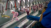 awful : Chicken internal organs manually divided on poultry factory.