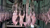 agrarian : Beheaded and disemboweled chicken carcasses on food factory rails. Stock Footage