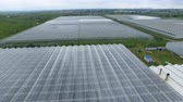sector : Agricultural industry concept. Drone fly over the greenhouses. Aerial shot in 4K. Stock Footage