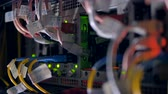 broadband : Cables and lights at data Center Servers. Backview. 4K. Stock Footage