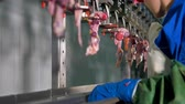 entrails : A low view on a worker at a giblet processing line.