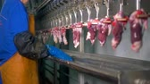 awful : A fast moving meat processing line with giblets.